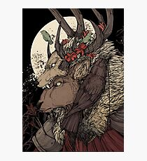 The Elk King Photographic Print