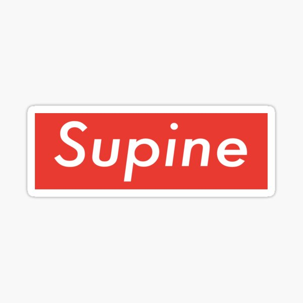 Supine T-shirt Stay Home in Style Sticker