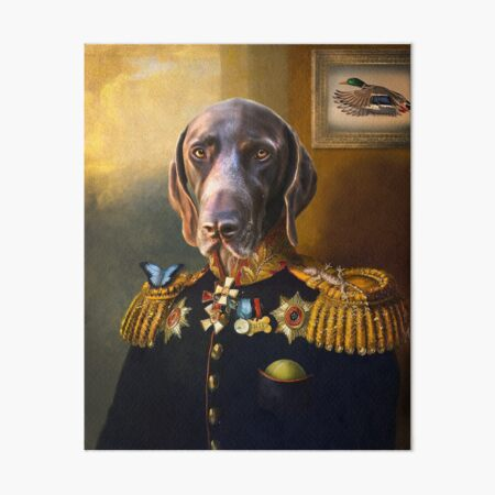 German Shorthaired Pointer Puppy Dog Hunting Photo Wall Picture 8x10 Art Print