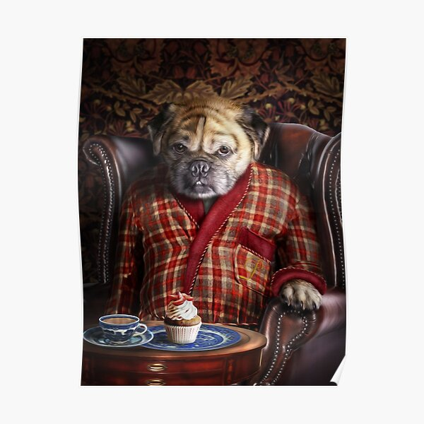Pug Dog Portrait - Pudgy  Poster