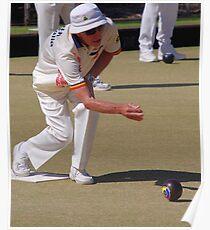 M.B.A. Bowler no. d040 Poster