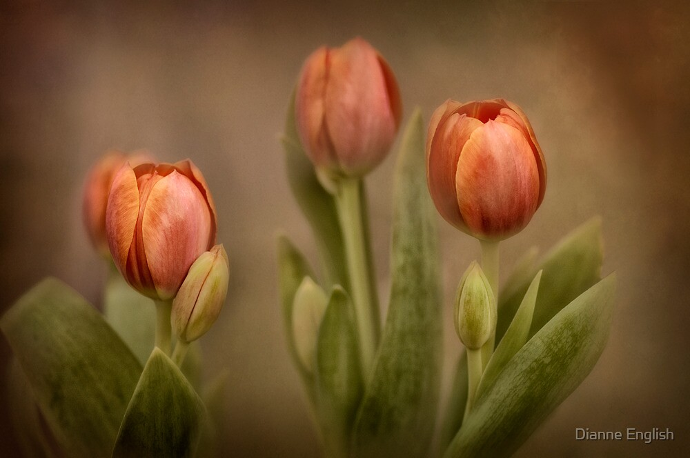 Tulip Treasures by Dianne English