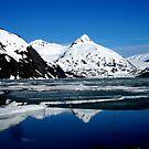 Alaska: Glacier by LightningArts