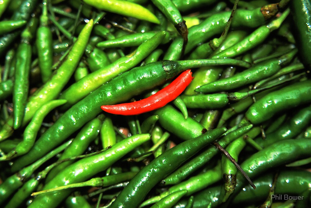 Red on green chilli. by Phil Bower