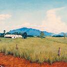 Warrina Farmsheds - Innisfail by Cary McAulay
