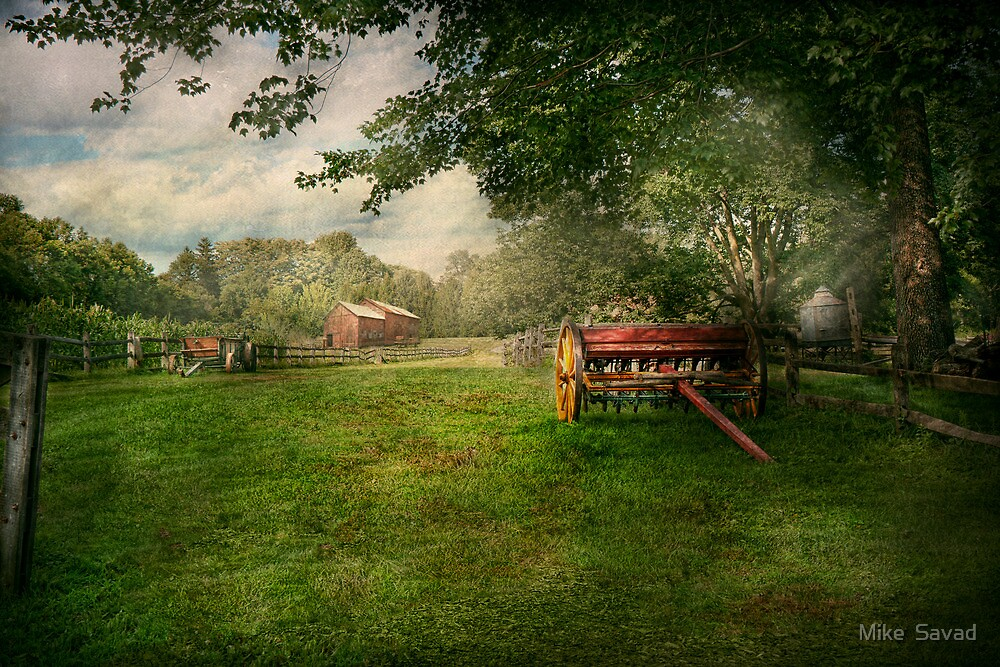 Country - The crops almost ready  by Mike  Savad