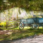 Country - The old wagon out back  by Michael Savad