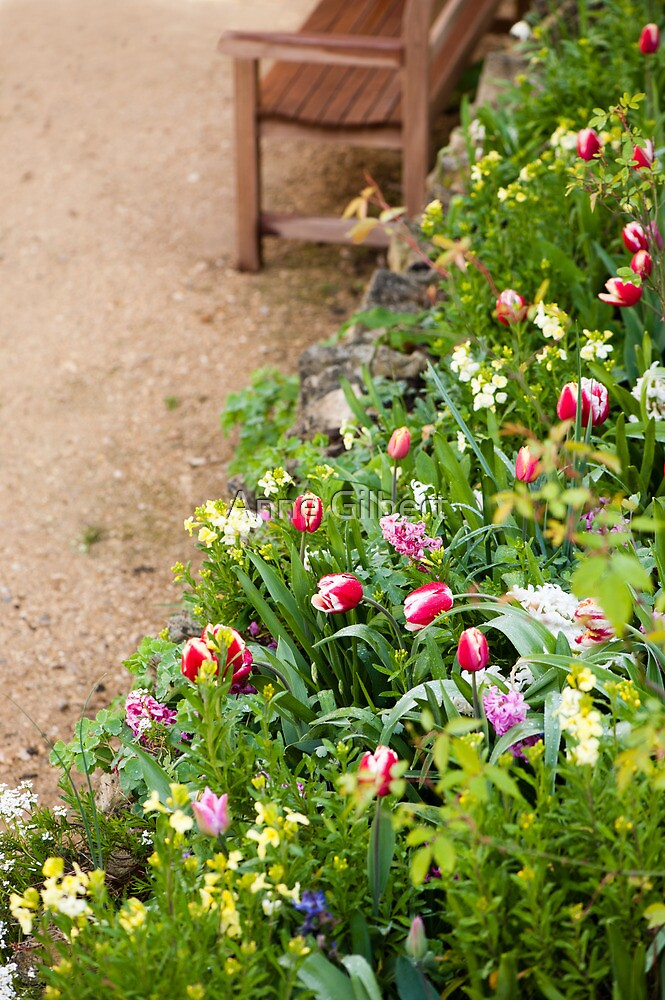Spring Border by Anne Gilbert