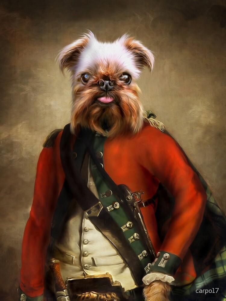 Griffon Bruxellois Dog Portrait - Jack by carpo17