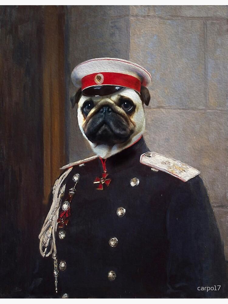Pug Dog Portrait - Harry by carpo17