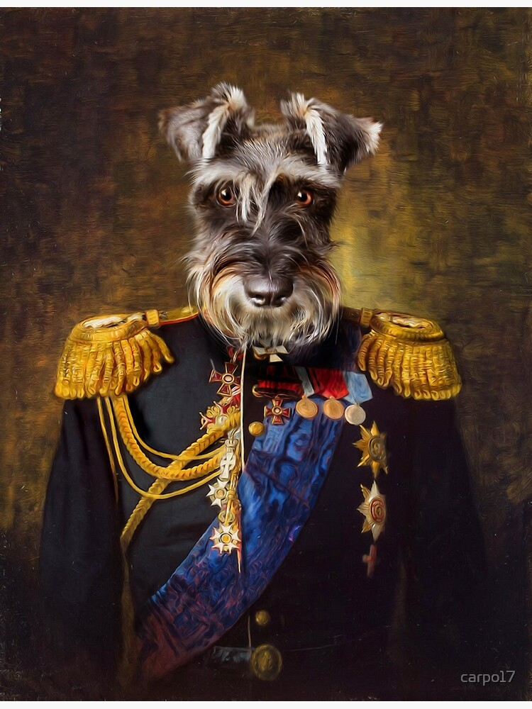 Schnauzer Dog Portrait - Elliott by carpo17
