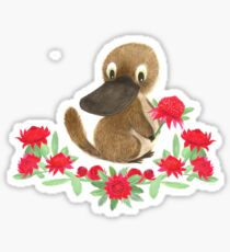 Aussie Flora & Fauna Series - NSW Sticker