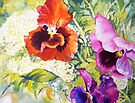 Pansies Delight #2 by bettymmwong