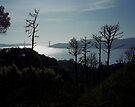 Angel Island by Rodney Johnson