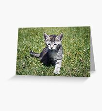 Clank the Kitten Greeting Card