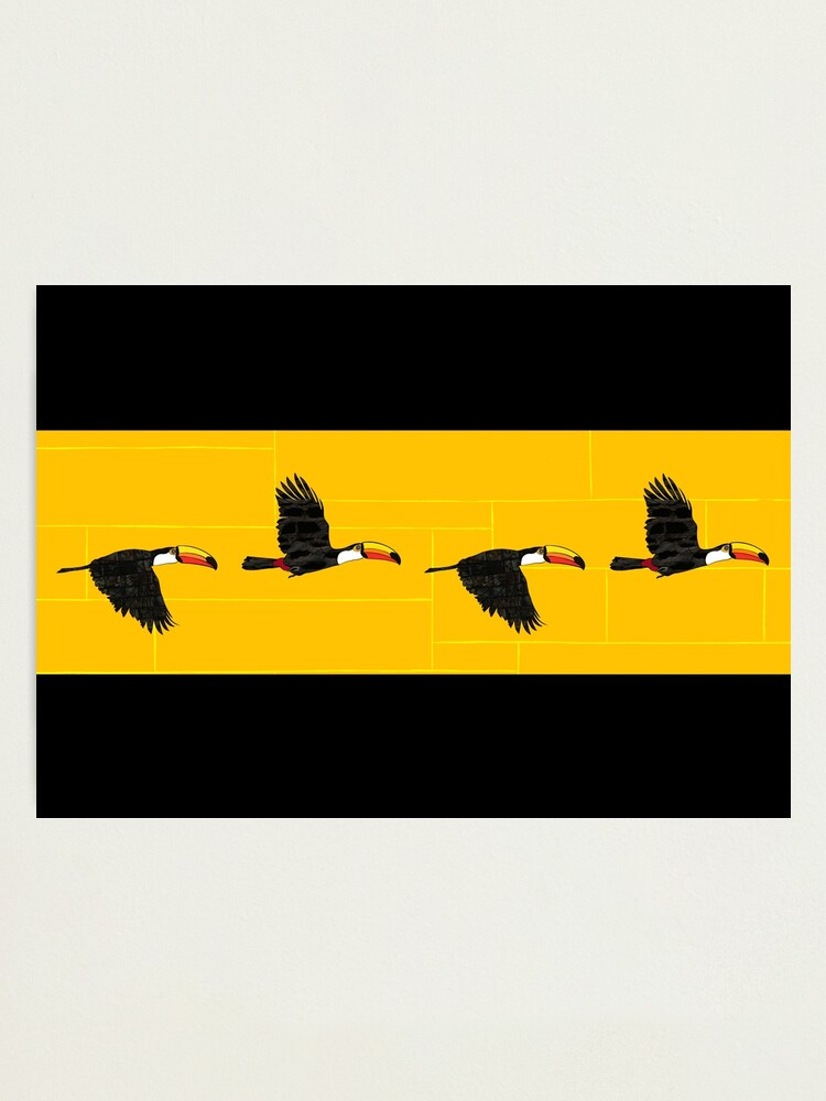 Alternate view of Brazilian Toucans Photographic Print