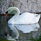 Mirror Mirror by jules572