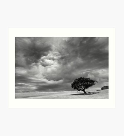 Shelter from the angry sky - Victoria Australia Art Print