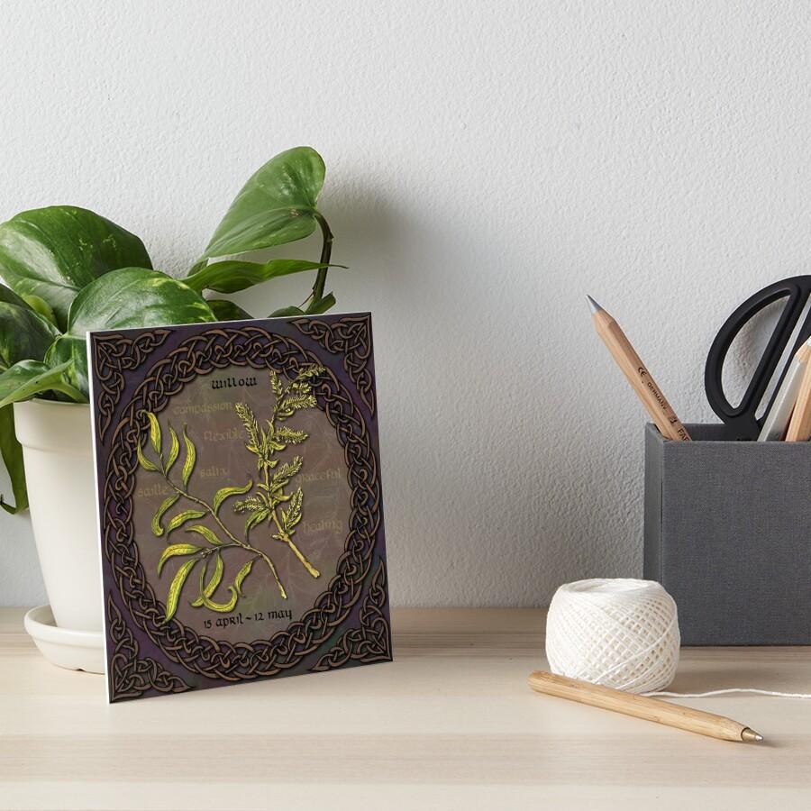 Celtic Tree Calendar - Willow Art Board Print