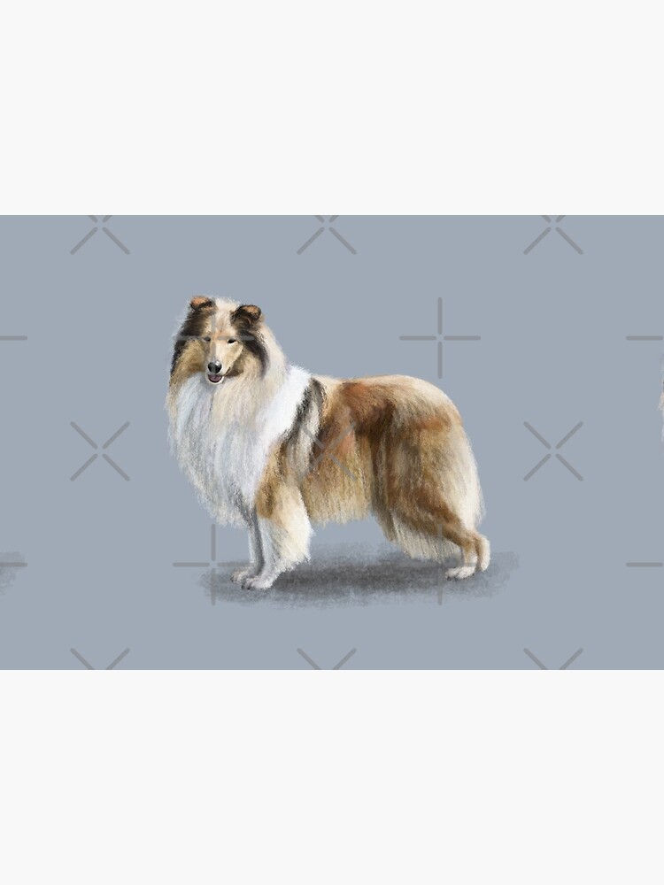 The Sable Rough Collie Dog by elspethrose