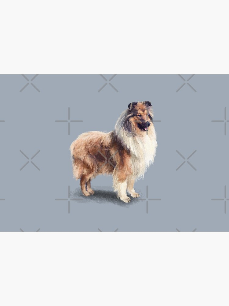 The Rough Collie by elspethrose