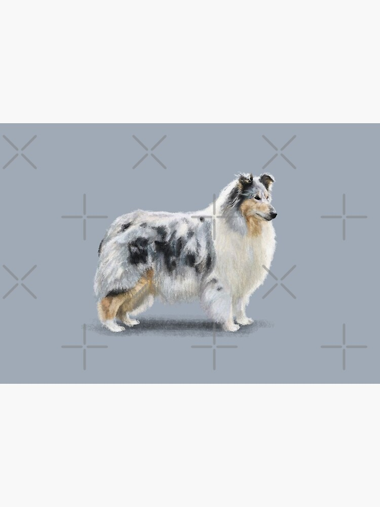 The Merle Rough Collie by elspethrose