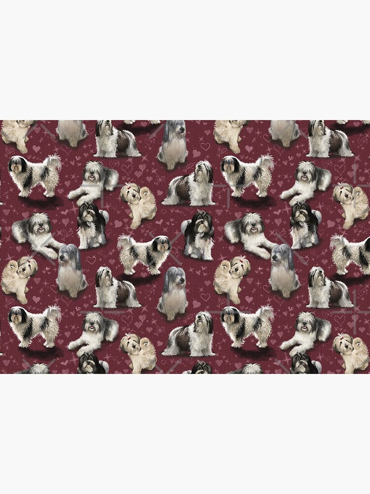 The Polish Lowland Sheepdog  by elspethrose