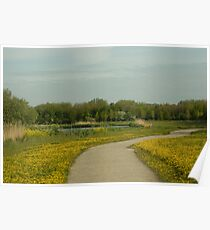 Buttercups trail Poster