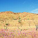 Land Flower Sky by oddoutlet