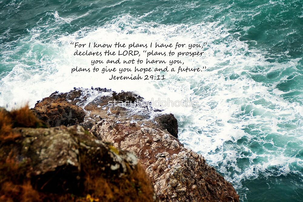 Jeremiah 29:11 by stacytoddphotog