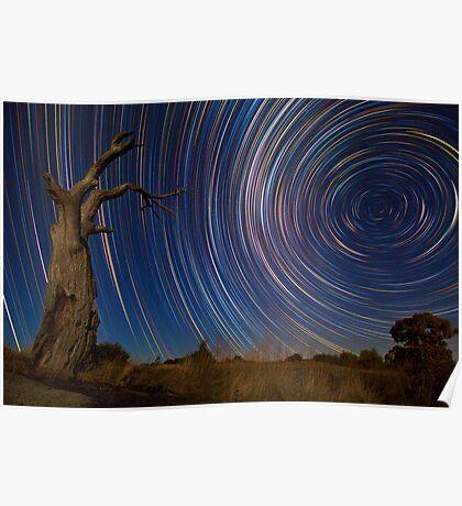 Dead Tree Stars II Poster