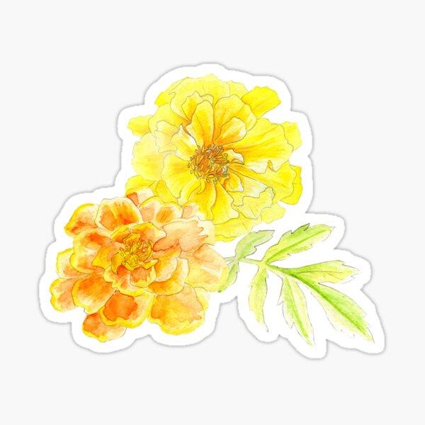 French marigolds orange yellow watercolor art Sticker