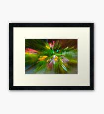 Rainy Day: Tulips, Zoomed Framed Print