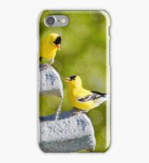 Is The Water Good iPhone Case/Skin