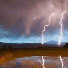 Lightning Striking Longs Peak Foothills by Bo Insogna