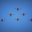 Roulettes of Pearce by Michelle Cocking
