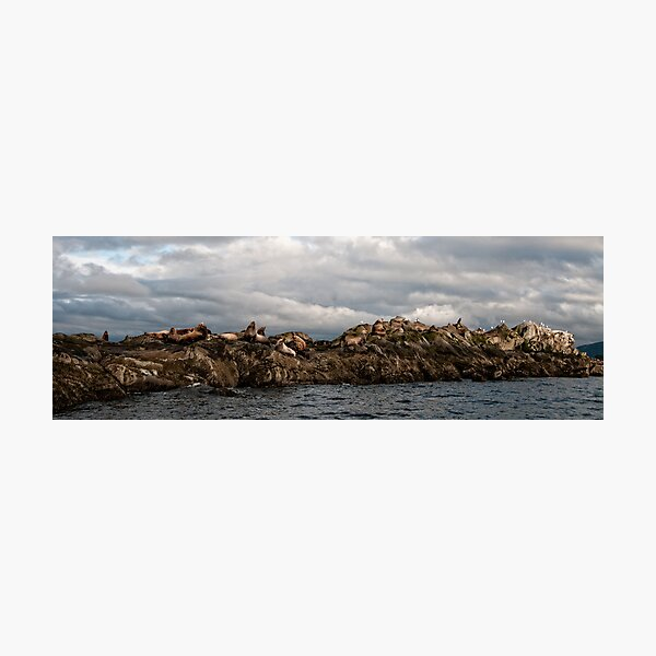 Lounging on the Belle Chain Islets Photographic Print