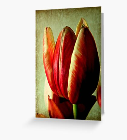 Stands Alone © Greeting Card