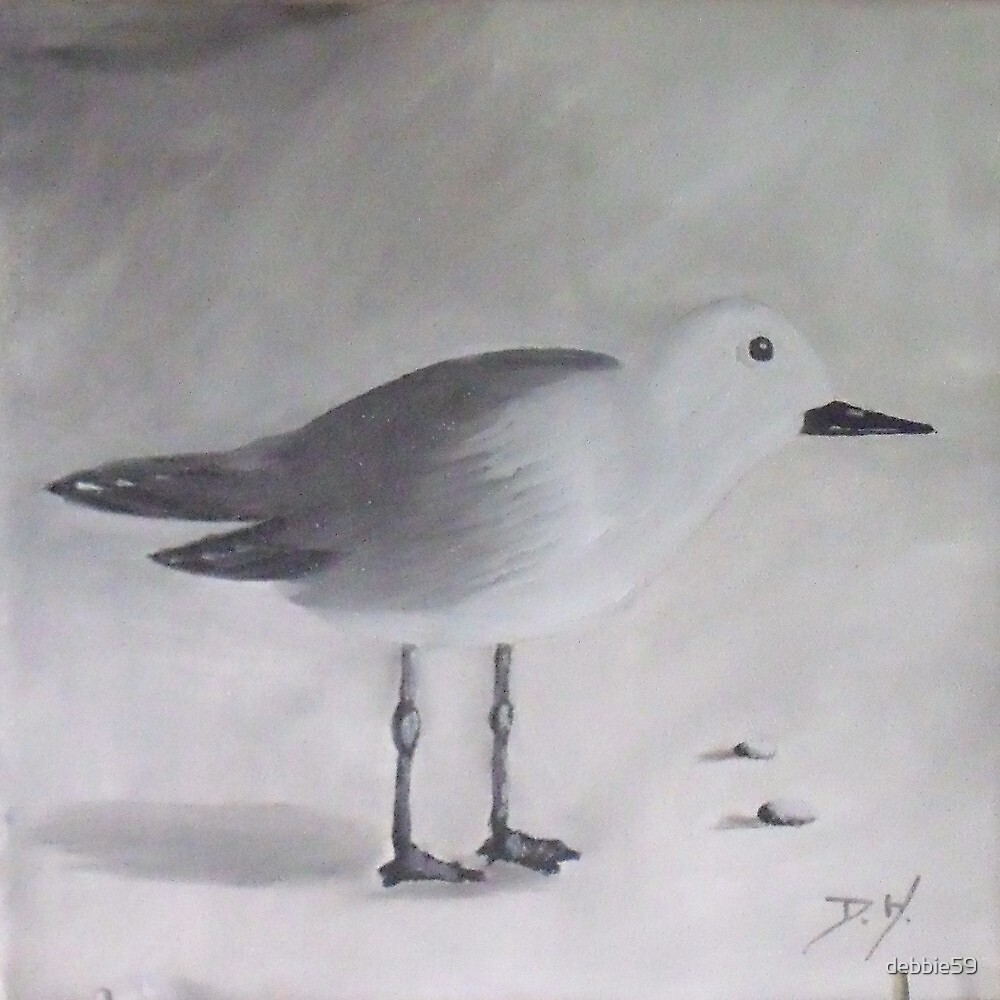 Seagul No 3 by Debbie Piro