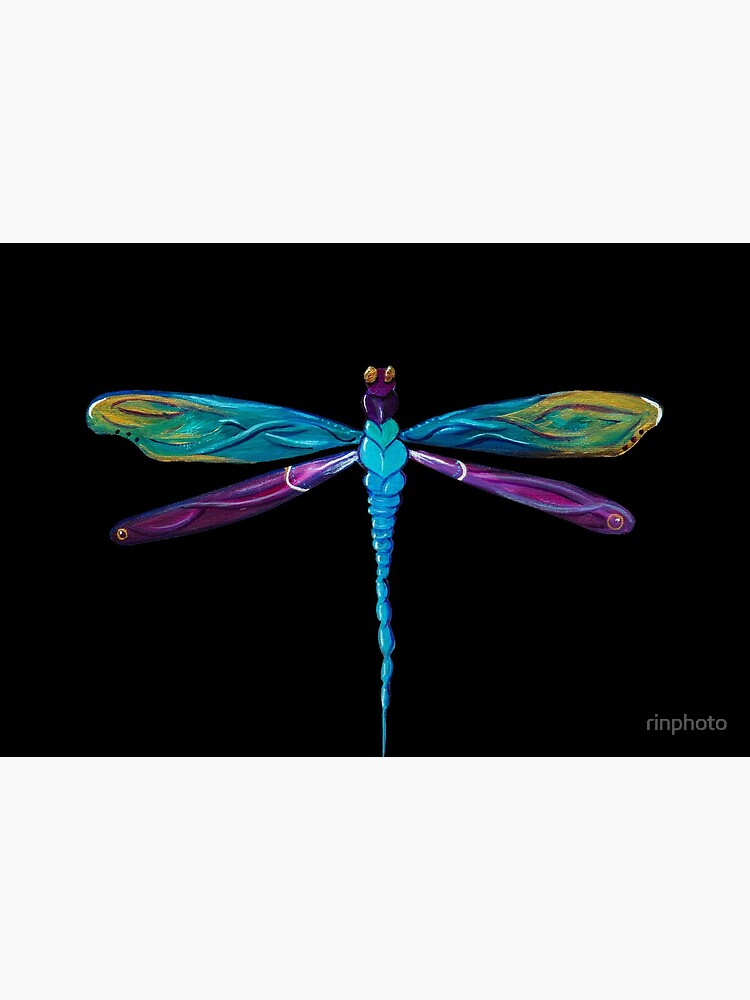 Painted Dragonfly by rinphoto