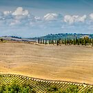 Tuscan Geometry by vivsworld