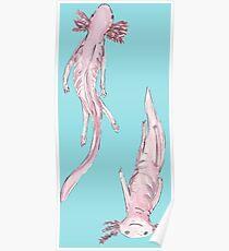 Axolotl friends Poster