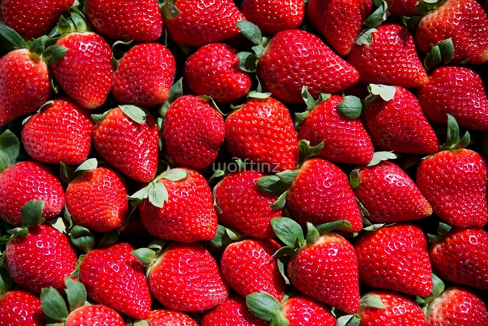 Berries, Berries & More Berries by wolftinz