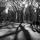 Family at The Central Park, New York City by Ilker Goksen