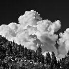 Summer Storm Lake Tahoe by Jeffrey  Sinnock