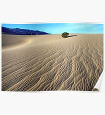 Death Valley Written By The Wind Poster