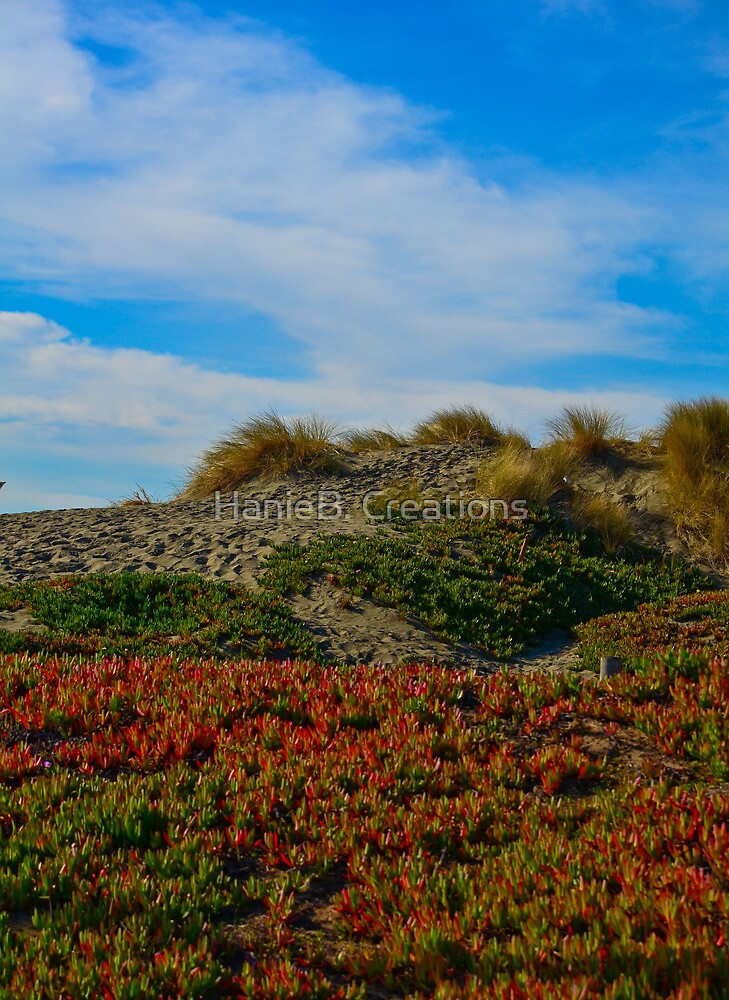 Natural Beach-Side Landscape by HanieBCreations