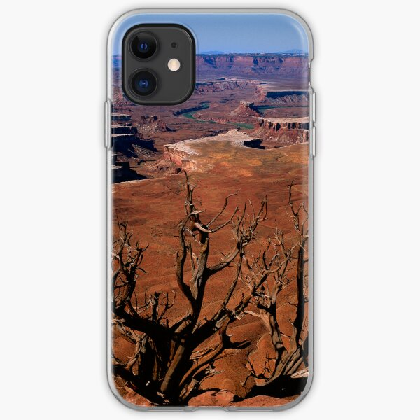 The Green River in Canyonland iPhone Soft Case