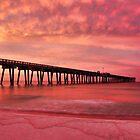 Panama City Pier by Chris Ferrell