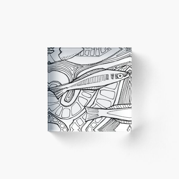 Bluehead Wrasse, Coloring Book Page Acrylic Block